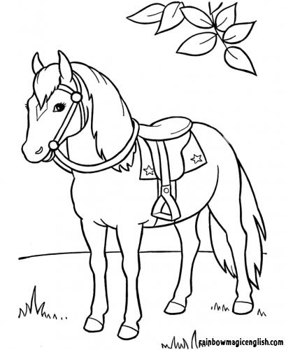 Disegni Cavalli da colorare