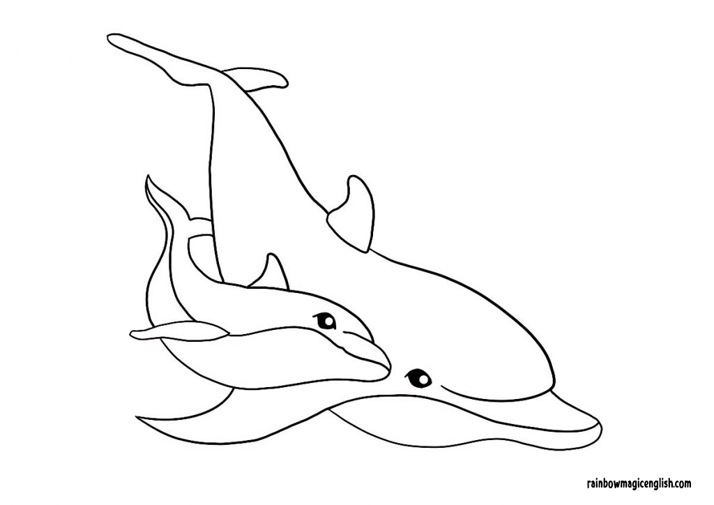 Disegni da colorare di delfini