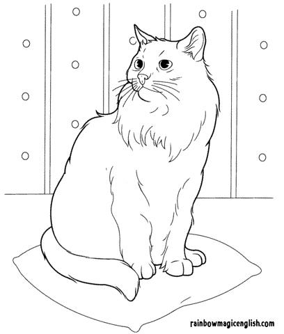 Disegni Gatti da colorare e stampare