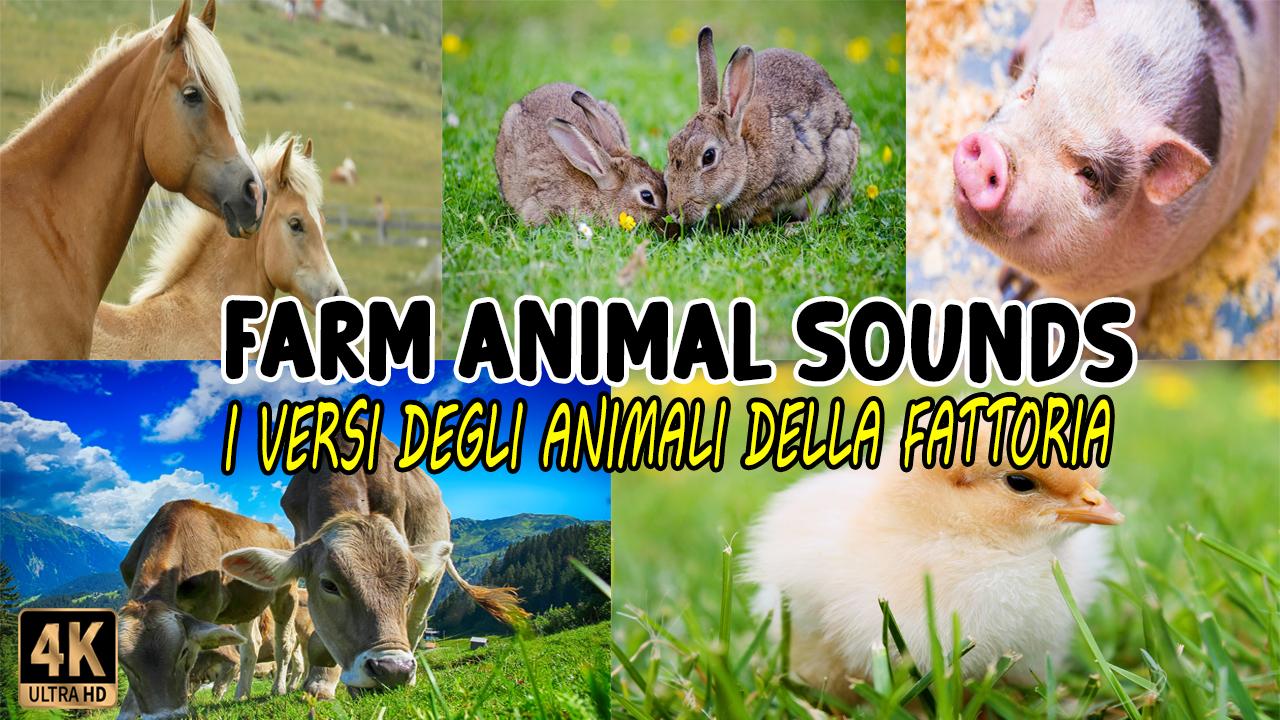 I Versi degli Animali della Fattoria | FARM ANIMAL Sounds